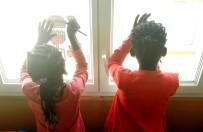 Atelier dessin (calque) à la fenêtre