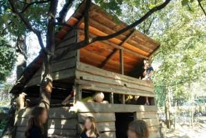 Déjeuner dans la cabane